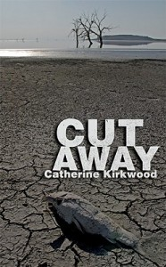 'Cut Away' by Catherine Kirkwood