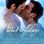 Book Lovers: Holiday Romance