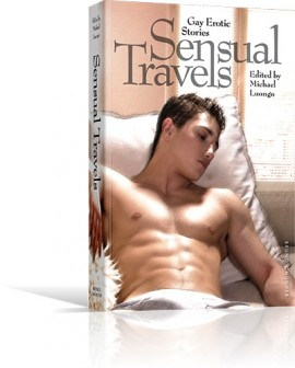 Sensual Travels New York Reading at Bureau of General Services, Queer Division