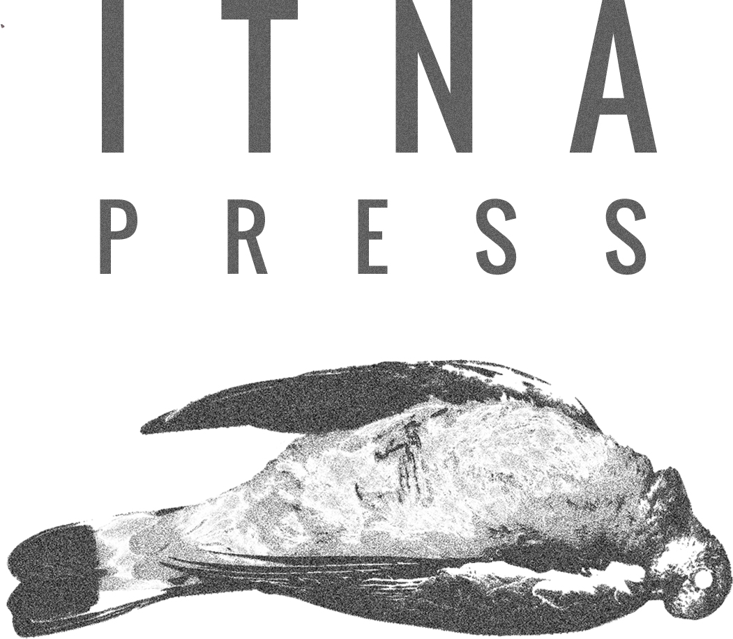 Call for Submissions: ITNA Press