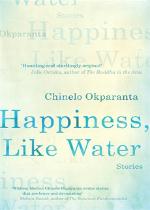 'Happiness, Like Water' by Chinelo Okparanta