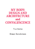 'My Body: Design and Architecture and Convalescence | Two Stories'  by Bruce Benderson