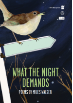 'What the Night Demands' by Miles Walser image