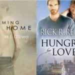 Rainbow Valentine: A Celebration of LGBT Romance Fiction