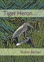'Tiger Heron' by Robin Becker