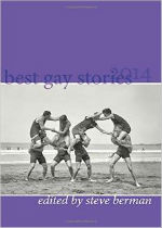 'Best Gay Stories 2014' Edited by Steve Berman image