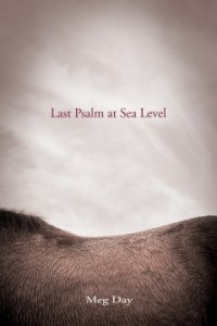 'Last Psalm at Sea Level' by Meg Day image