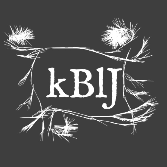 Call for Submissions: Kaaterskill Basin Literary Journal