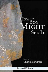 'How the Boy Might See It' by Charlie Bondhus image