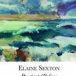 'Prospect/Refuge' by Elaine Sexton
