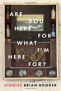 'Are You Here For What I'm Here For?' by Brian Booker image