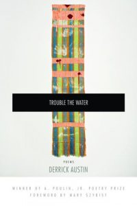 'Trouble the Water' by Derrick Austin image