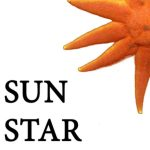 Call for Submissions: Sun Star Review
