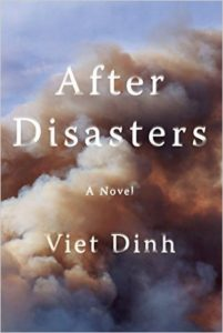'After Disasters' by Viet Dinh image