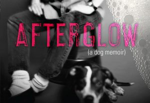 'Afterglow (A Dog Memoir)' by Eileen Myles image