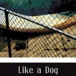 'Like a Dog' by Tara Jepsen