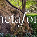 Call for Submissions: Metafore Magazine