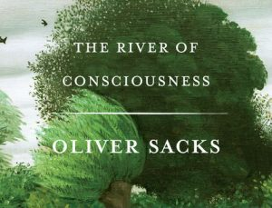 'The River of Consciousness' by Oliver Sacks image