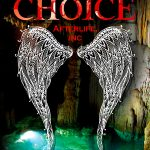 'Fury's Choice' by Brey Willows