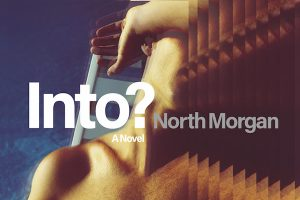 New in May: Casey Plett, Tommy Pico, Nicola Griffith, Stephen McCauley, and North Morgan image