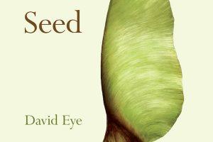 'Seed' by David Eye image