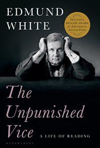'The Unpunished Vice' by Edmund White image