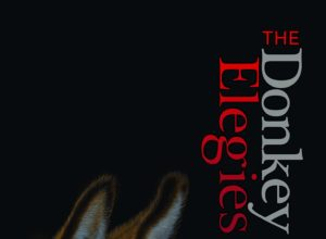 Donkey Elegies by Nickole Brown image