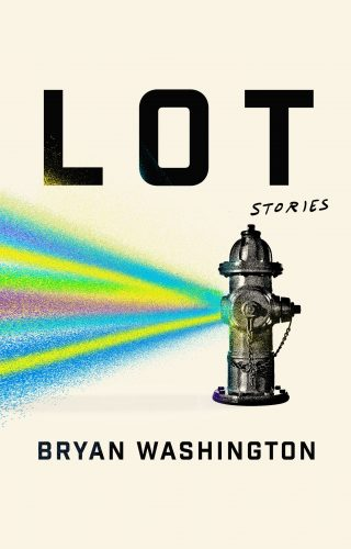 Cover of Lot